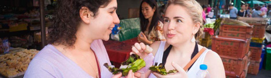 chiang mai private tour Chiang mai